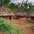 Stock Photo: Traditional africhuts