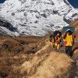 Nepali porters in mountain trekking — Stockfoto