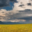 Landscape with storm clouds — Stock Photo #28215731