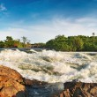 white nile — Stock Photo