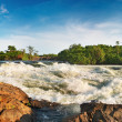 Stock Photo: White Nile