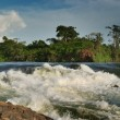 Violent rapid Bujagali falls in upper of Nile — Stockfoto