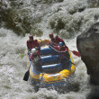 Rafting competition — Stock Photo #28216489