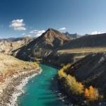 Mountain river Katun — Stock Photo #28216493