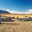 Ancient turkic monuments — Stock Photo