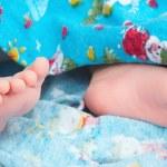 Swaddled newborn baby feet — Stock Photo #28216681