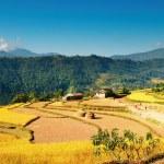 aldea del Himalaya — Foto de Stock