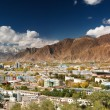 City of Lhasa- capital of Tibet — 图库照片