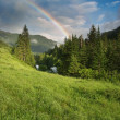 Stock Photo: Rainbow over forest