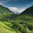 Stock Photo: Mountain valley