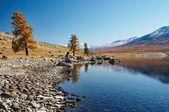 Mountain lake in mongolian wilderness — Stock Photo
