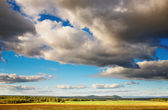 Landscape with hayfield and cloudy sky — Stock Photo