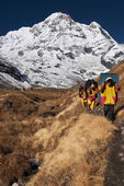 Nepali porters in mountain trekking — Stock Photo