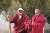 Tibetan monks in Tashilhunpo monastery — Stock Photo