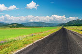 Road and green field — Stockfoto