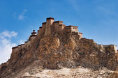 Ancient tibetan fortress. Gyantse, Tibet — Stock Photo