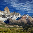 Mont fitz roy, Argentine — Photo