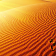 Stock Photo: Footprints on sand dune