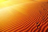 Footprints on sand dune — Stock Photo
