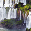 Iguassu Falls, view from Argentinian side — Stock Photo #38688491