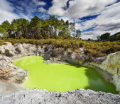 Devil's Bath pool, Waiotapu, New Zealand — Stock Photo
