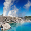 Pohutu Geyser, New Zealand — Stock Photo #48919631