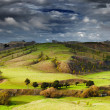 New Zealand landscape, North Island — Стоковое фото #49588495
