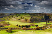 New Zealand landscape, North Island — Стоковое фото