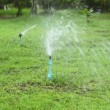 Stock Video: Lawn sprinkler watering green lawn