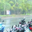 Stock Video: Heavy rain