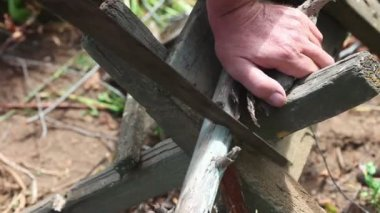 Man sawing dry log. — Wideo stockowe