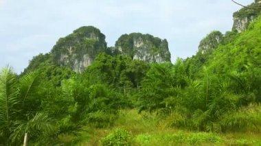 таиланд пейзаж. — Стоковое видео