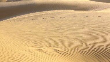 Dunas de areia — Vídeo stock