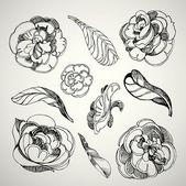 Rosas flores — Vetor de Stock