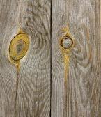 Dřevo prkna textura — Stock fotografie