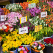 Sale of blooming tulips at the street market — Stock Photo