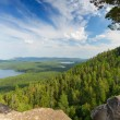 Forest landscape with mountain and lake — Stock Photo
