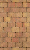 Seamless texture of brick wall — Stock Photo