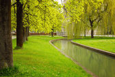 Munich's park with river at spring — Foto Stock