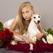 Girl, whippet  dog and red roses - Stock Photo
