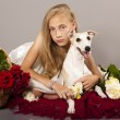 Girl, whippet dog and red roses — Stock Photo