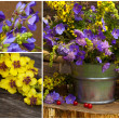Stock Photo: Flowers in bucket