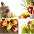 Happy Easter - baby rabbits and easter eggs — Стоковая фотография