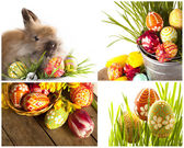 Happy Easter - baby rabbits and easter eggs — Stock Photo