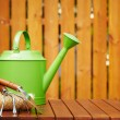 Autumn gardening tools - Stock Photo