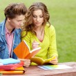 Couple of students holding a notebook outdoors and smiling — Stock Photo #13879911