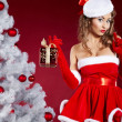 Beautiful sexy girl wearing santa claus clothes — Stock Photo #14944055