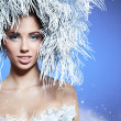 Winter queen — Stockfoto