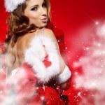 Christmas — Stock Photo #16494959