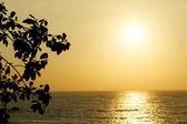波とインドのゴアの夕日 — ストック写真